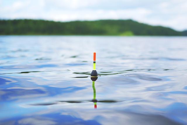 Bliv klædt på til din nye hobby – fiskeri